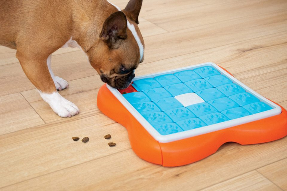 Puzzles For Pups