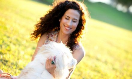 Q&A On The Pet Sitting Business