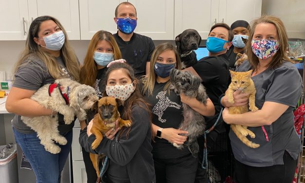 Emancipet's Clinic Celebrates One Year
