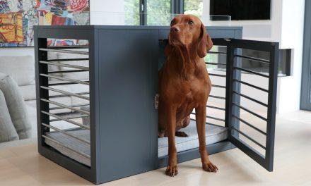 Stylish & Functional Dog Crate