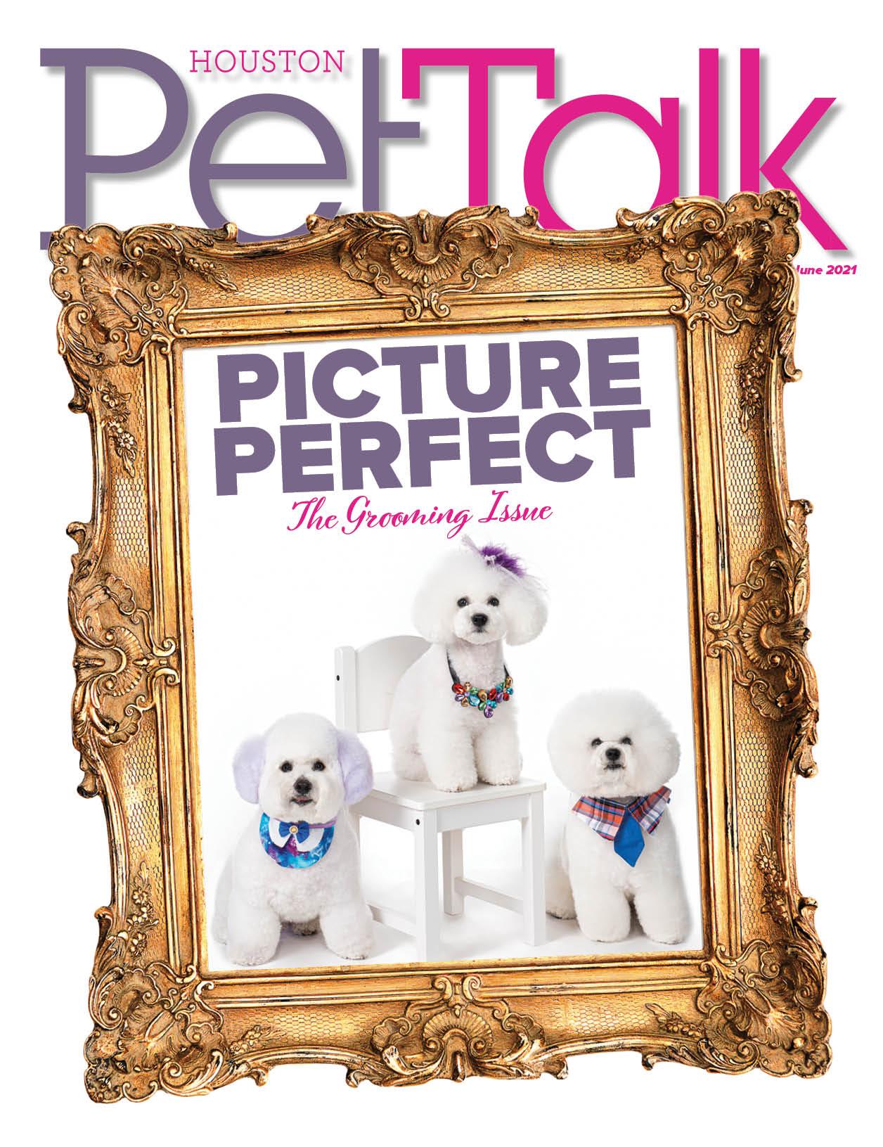 June 2021 Digital Issue of Houston PetTalk
