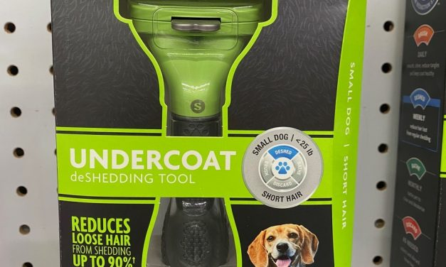 Summer Grooming For Shedding