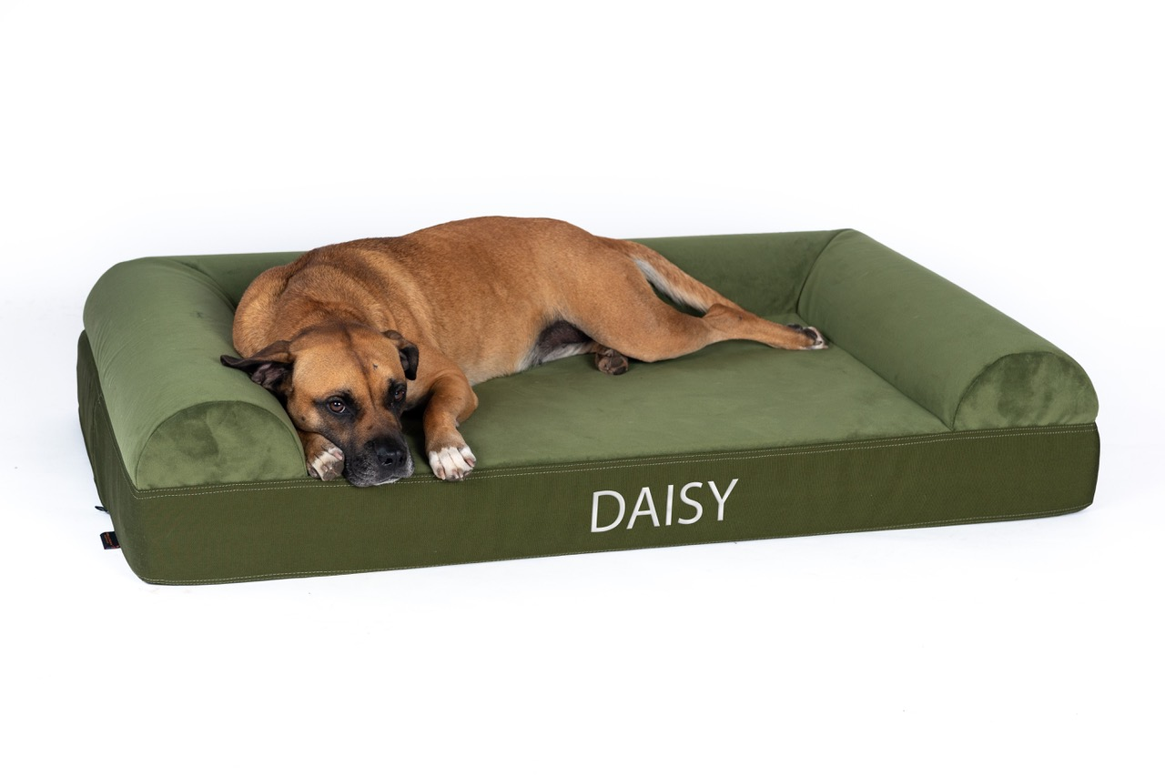 The Ultra Vel Orthopedic Dog Couch Bed